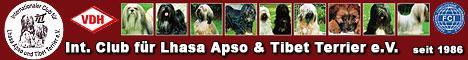 Der Internationale Club für Lhasa Apso und Tibet Terrier e.V. (ILT)